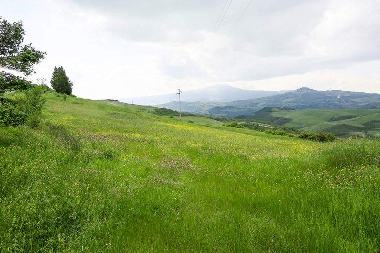 valle_del_podere_poderaccio_2_mini_vacanza_in_toscana_san_casciano_dei_bagni